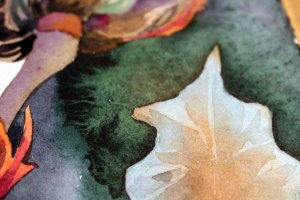 Abgleich der Farben der Blüte und der Blätter des Sebnitzer Flussteufels (c) Frank Koebsch