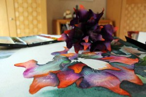 Abgleich zwischen Aquarell und der Blume des Flussteufels aus Sebnitz (c) Frank Koebsch (1)