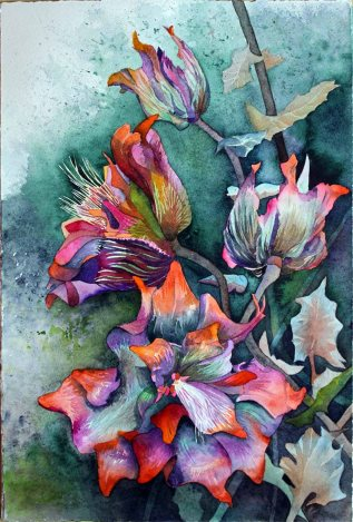 Die Blüten des Sebnitzer Flussteufels (C) Aquarell von Frank Koebsch