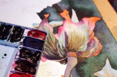 Die erste Blüte des Sebnitzer Flussteufels entsteht (c) Frank Koebsch (1)