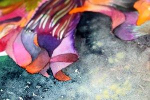 Die Vielzahl der Details in der Blüte des Sebnitzer Flussteufels fesseln später das Auge (c) Frank Koebsch (2)