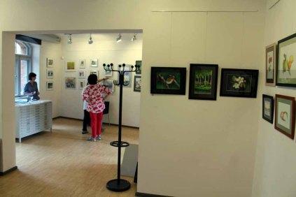 Hängen der Ausstellung Faszination Aquarelle (c) Frank Koebsch (11)