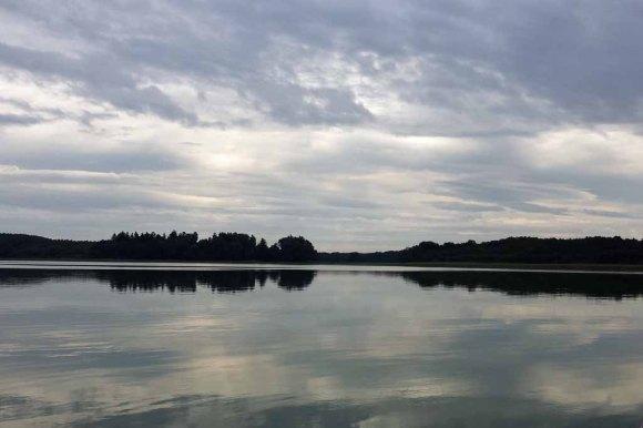 Morgen am Breiten Luzin bei der Suche nach Seeadler (c) Frank Koebsch (2)