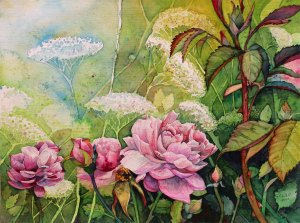 Rosengarten (c) Aquarell von Frank Koebsch