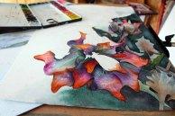 Schritt für Schritt entstehen die Blüten des Sebnitzer Flussteufels (c) Frank Koebsch (1)