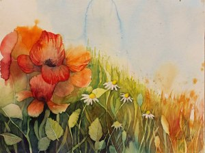 Ein typisches Sommermotiv (c) Mohnaquarell von Frank Koebsch