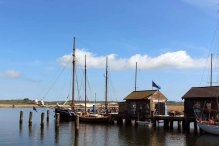 Traditionssegler im Hafen von Gager (c) Frank Koebsch (3)
