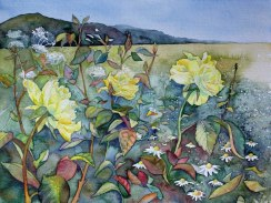 Typische Sommerblüten (c) ein Rosen Aquarell von Frank Koebsch