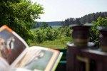 Fensterblick Nationalparkhotel Kranichrast