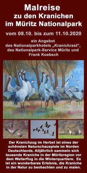 Malreise zu den Kranichen im Müritz Nationalpark 2020