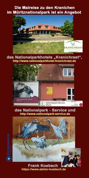 Malreise zu den Kranichen im Müritz Nationalpark 2021 RS