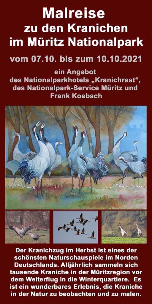 Malreise zu den Kranichen im Müritz Nationalpark 2021 V