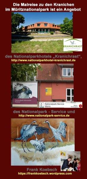 Malreise zu den Kranichen im Müritz Nationalpark - Partner