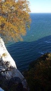 Herbst bei den Kreidenfelsen Rügens (c) Frank Koebsch (1)