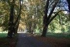 Kastanienallee im Park von Putbus (c) Frank Koebsch (3)