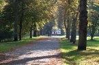 Kastanienallee im Park von Putbus (c) Frank Koebsch (6)