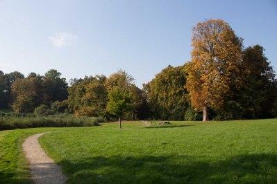 Sonniger Herbst im Park von Putbus (c) Frank Koebsch (2)