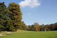 Sonniger Herbst im Park von Putbus (c) Frank Koebsch (5)