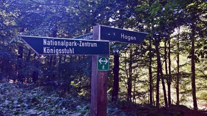 Wegweiser zum Nationalpark - Zentrum Köningsstuhl (c) Frank Koebsch