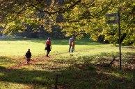 Wegweiser im hersbtlichen Park von Putbus (c) Frank Koebsch (2)