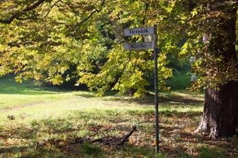 Wegweiser im hersbtlichen Park von Putbus (c) Frank Koebsch