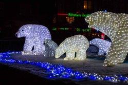 Eisbären bei der Rostocker Lichtwoche (c) Frank Koebsch