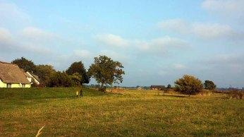 Herbst auf den Boddenwiesen von Middelhagen (c) Frank Koebsch