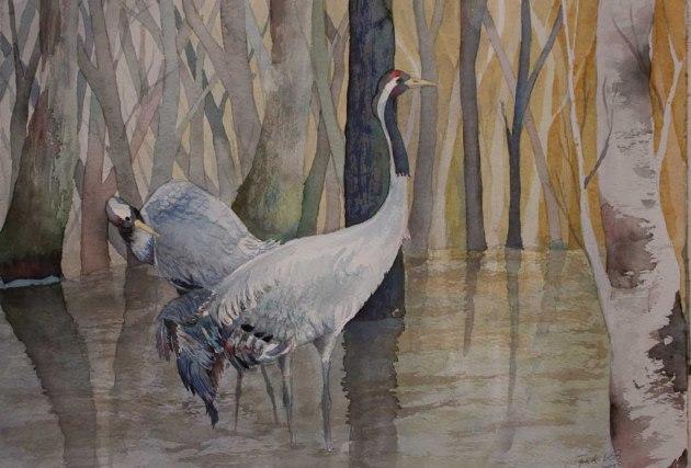 Im Auenwald (c) ein Kranich Aquarell von Frank Koebsch
