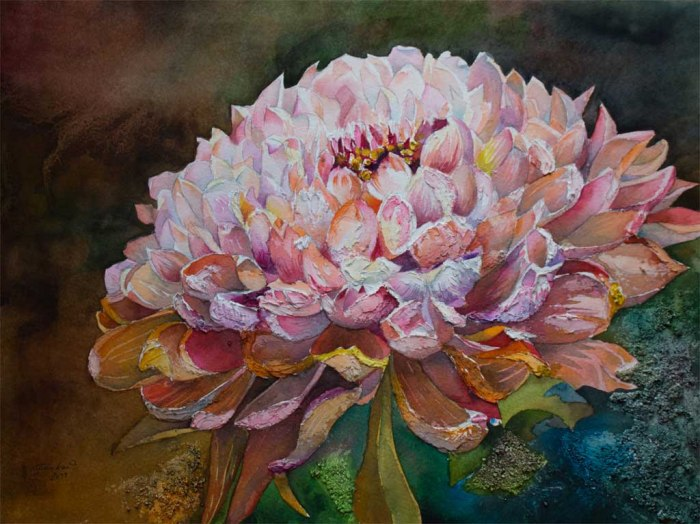 Blütentraum (c) ein Chrysanthemen Aquarell von Frank Koebsch