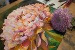 Letzer Abgleich für das Aquarell einer Chrysanthemen Blüte (c) Frank Koebsch