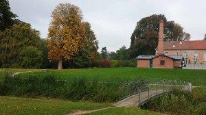 Herbstliches Motiv im Park von Putbus (c) Frank Koebsch