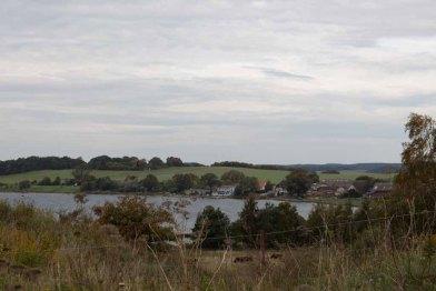 Blick über die Hagensche Wiek nach Alt Reddewitz (c) Frank Koebsch