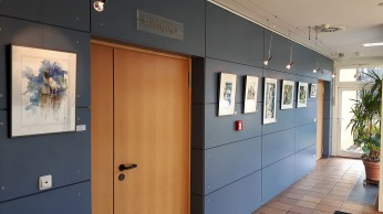 Erste Einblicke in unsere Ausstellung Frühling im Mecklenburg Vorpommern (c) Frank Koebsch (5)