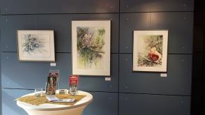 Erste Einblicke in unsere Ausstellung Frühling im Mecklenburg Vorpommern (c) Frank Koebsch (7)