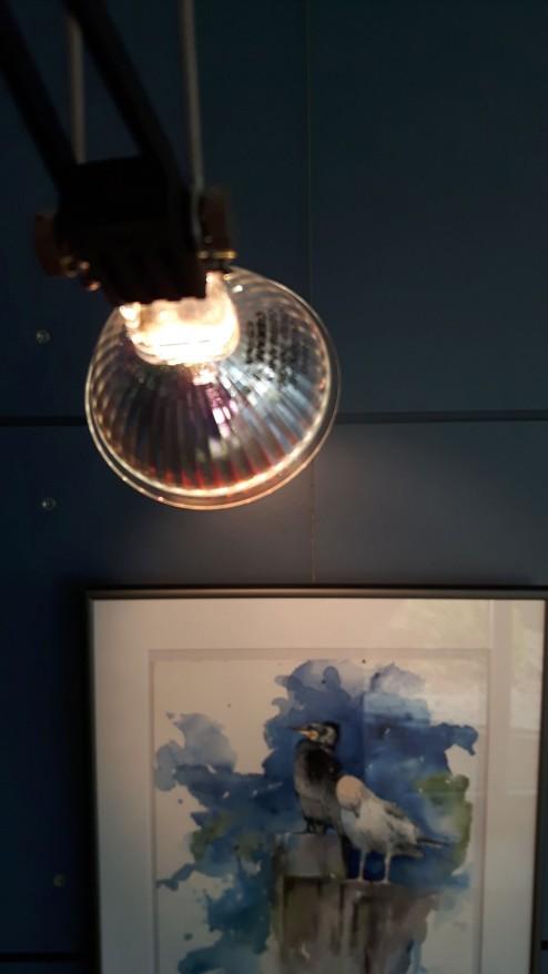 Es ist wichtig unsere Aquarelle ins rechte Licht zu setzen (c) Frank Koebsch