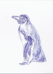 Skizze Pinguin seitlich (c) Frank Koebsch