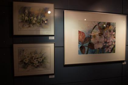 Unsere Aquarelle in der Ausstellung in Graal Müritz (c) Frank Koebsch (3)