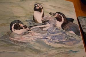 14 - Ein Pinguin Aquarell entsteht - fast fertig (c) Frank Koebsch