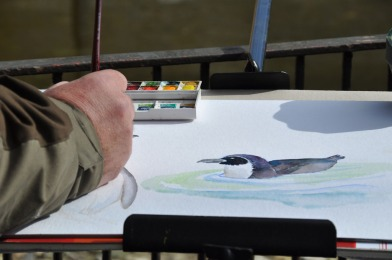 Malen bei den Pinguienen des Rostocker Zoos (c) Maria Zepplin (1)