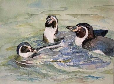 Wasserballett (c) ein Pinguin Aquarell von Frank Koebsch