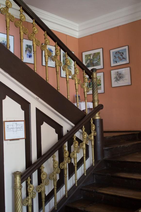 Aquarelle von Hanka & Frank Koebsch zu Kunst Offen im Schloss Griebenow (5)