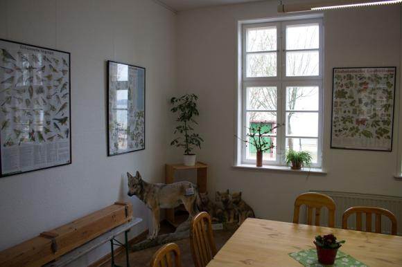 Blick in den Seminarraum der Naturschutzstation Schwerin (c) Frank Koebsch (1)