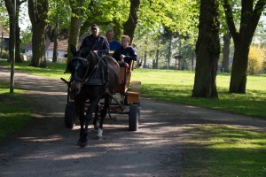 Kremserfahrt im Schlosspark Griebenow (c) Frank Koebsch
