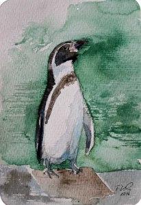Pinguin (c) Miniatur in Aquarell von Frank Koebsch (1)