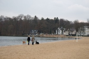 Spaziergang am Zippendorfer Strand mit Frau Katja Burmeister - NABU Schwerin (c) Frank Koebsch