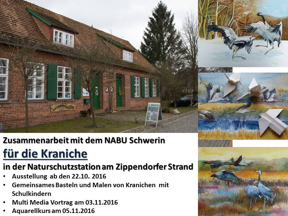 Zusammenarbeit mit dem NABU Schwerin für die Kraniche