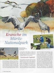 Kraniche im Müritz -Nationalpark - Mein Kreativ - Atelier Nr. 83 S. 52