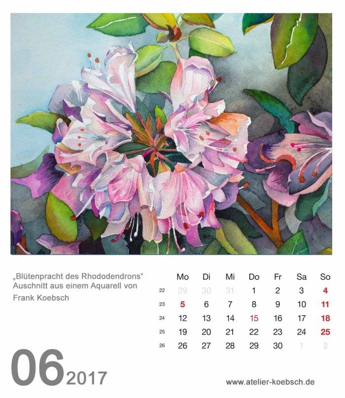 Kalenderblatt Juni 2017