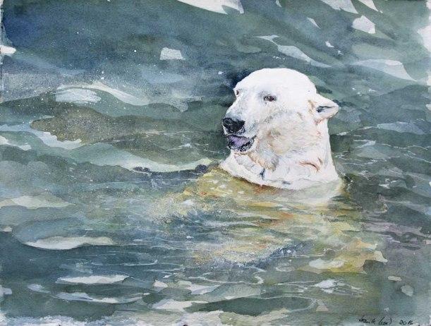 Was kommt jetzt? (c) ein Eisbären Aquarell von Hanka Koebsch