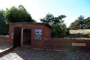 Ausstellung Faszination Kraniche im Natureum Darßer Ort (c) FRank Koebsch (2)